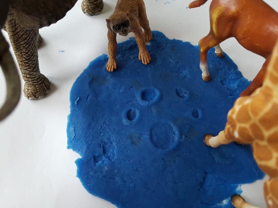 ciastolina ślady zwierząt