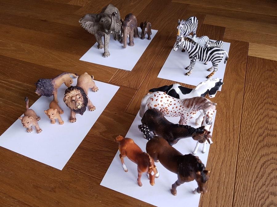 figurki zwierząt sortowanie