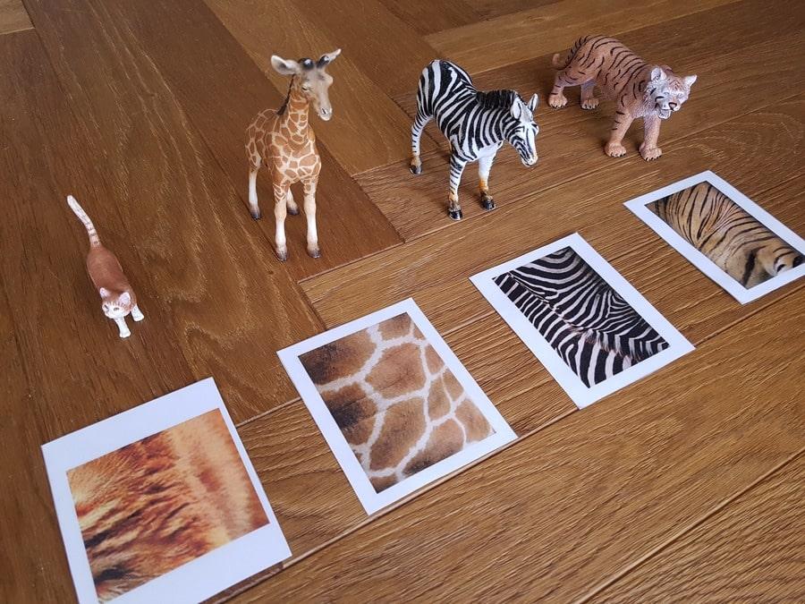 figurki zwierząt zabawa z kartami