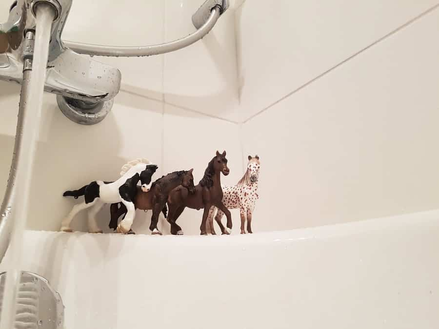 kąpiel z figurkami zwierząt