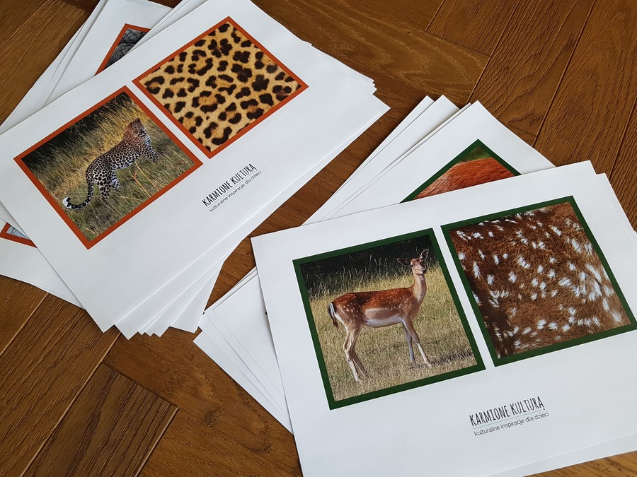 karty zwierząt do pobrania
