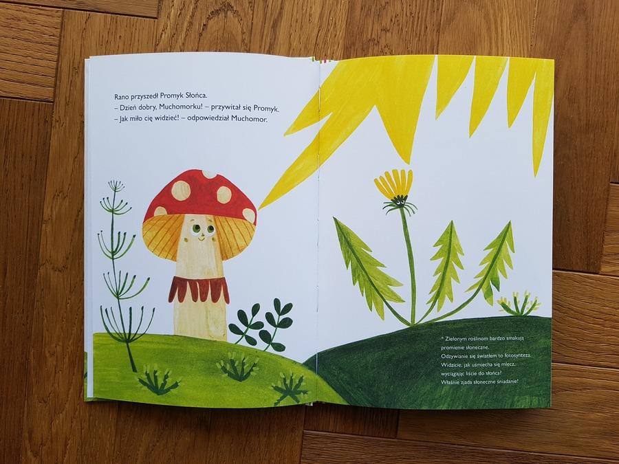 Chmurrra Burrra książka dla dzieci