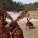Park Dolina Wkry - Pomiechówek, plac zabaw i spacer w koronach drzew